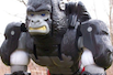 Beast Wars Optimus Primal