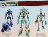 Transformers Timelines (BotCon) Transmutate